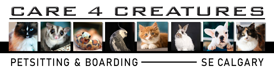 Calgary Pet Sitting - Care 4 Creatures